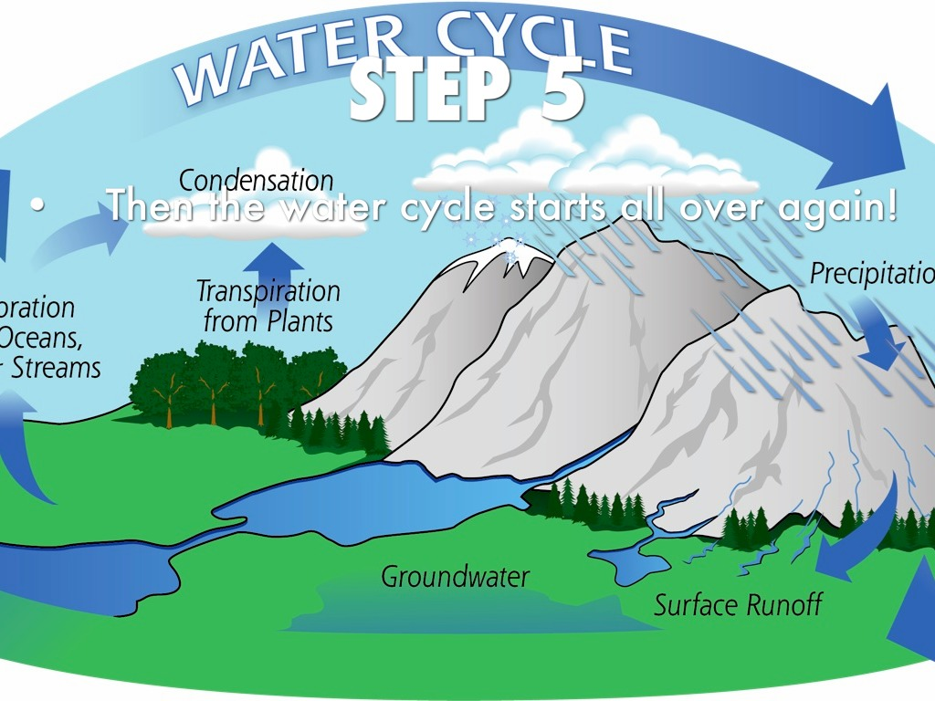 the water cycle steps - water damage los angeles