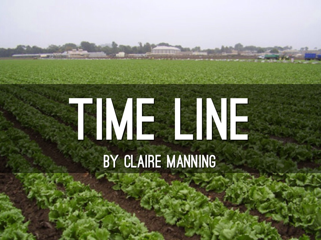 Time Line Claire Manning