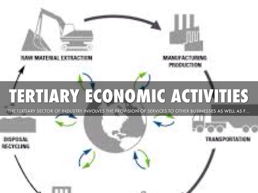 increasing importance of tertiary sector in india It has increased because the primary sector and secondary sector have decreased they have decreased because machines have taken over the employees jobs, and so they find work in the tertiary sector.