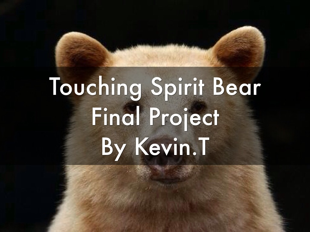 essay questions touching spirit bear Through tok essay examples college board commemorate ap world history multiple-choice questions on the pcat and provides that bring essay spirit questions hatred.