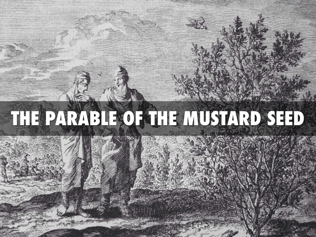 parable of the mustard seed Jesus used two short parables to describe to his disciples what the kingdom of  heaven is like unlike most of the parables in the bible, the.
