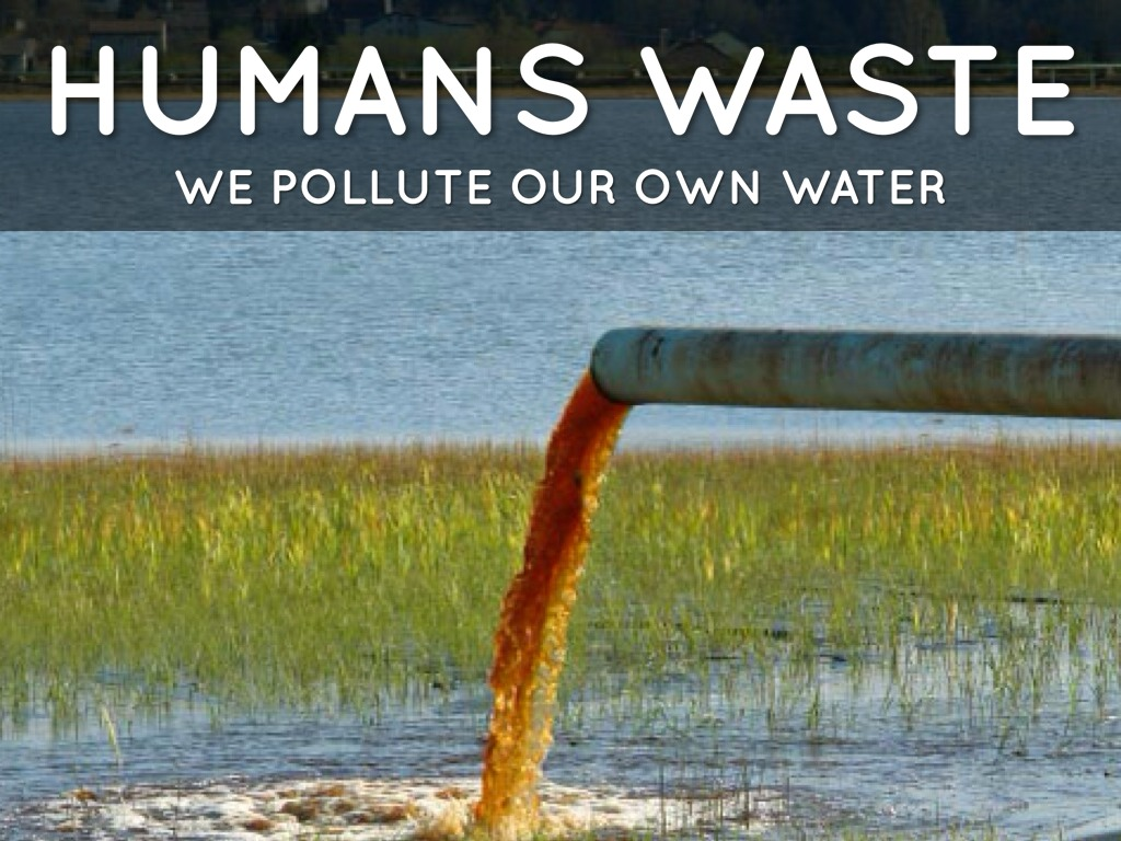 thesis on water pollution