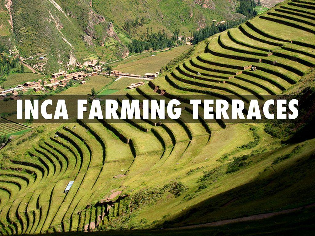 Inca farming terraces by for Terrace farming