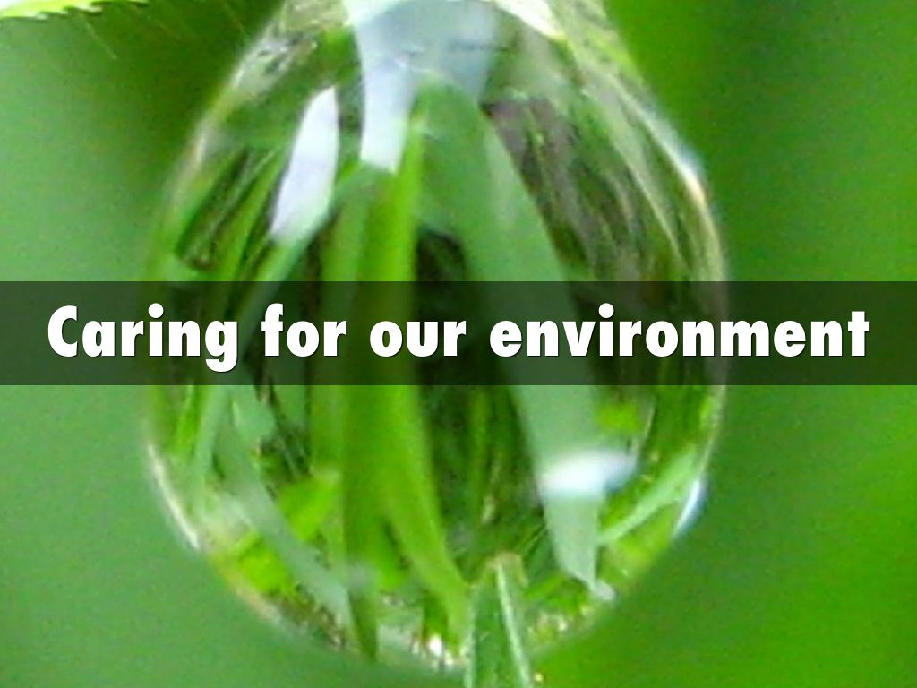 care for our environment Discover how our environment of care procedures and guidelines help ensure the safety of the patients, visitors and employees within our facilities.
