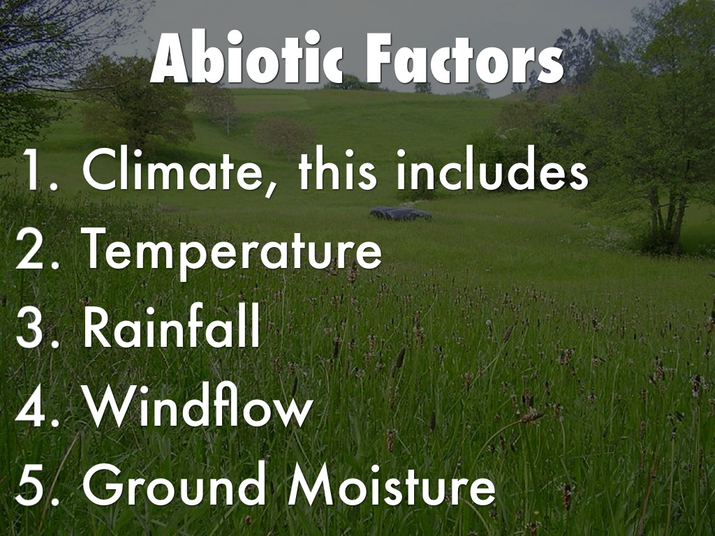 temperate grassland features Abiotic and biotic factors of the grasslands: the grasslands of the world constitute a major part of ecosystems in different parts of the world ( like lagre parts of.