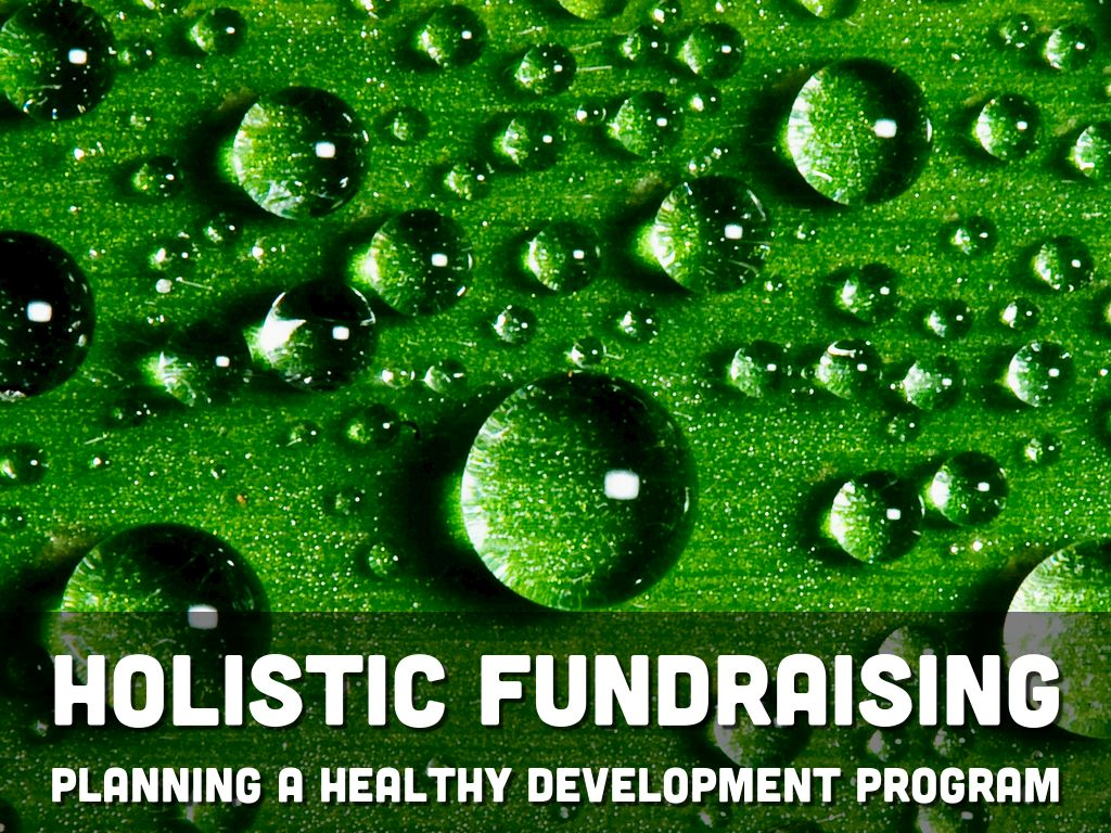 Copie de Holistic Fundraising: Creating a Plan for a Healthy and Sustainable Development Program