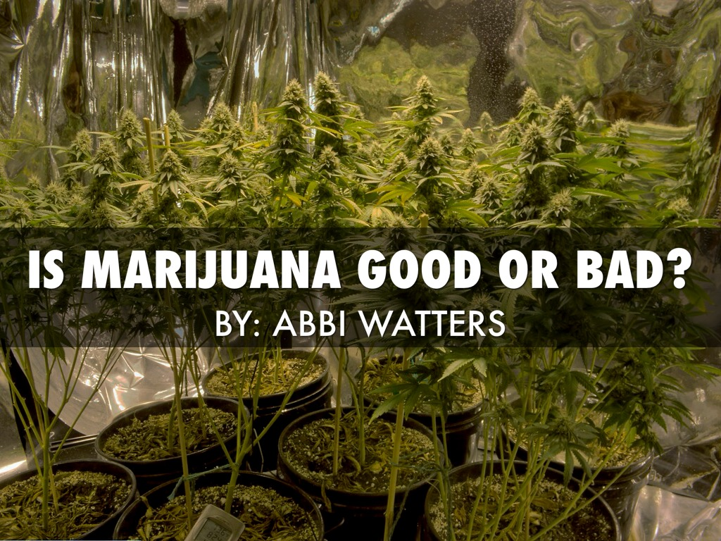 why marijuana is bad The national academies of sciences, engineering and medicine sorted through  10000 studies to determine the good and bad health effects of.