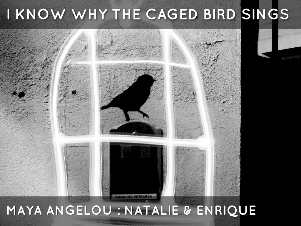 """i know why a caged bird I know why the caged bird sings: about the poem """"i know why the caged bird sings"""" is a free verse written by the american poet and civil rights activist maya angelou."""