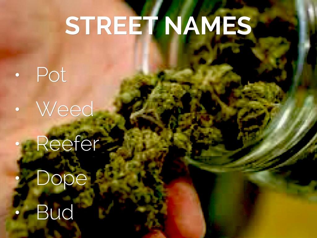 Marijuana by conasercharles