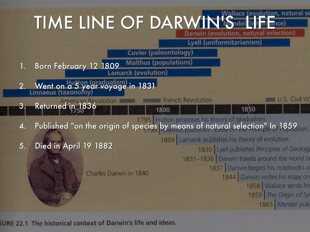 charles darwin by danny brown time line of darwin s life