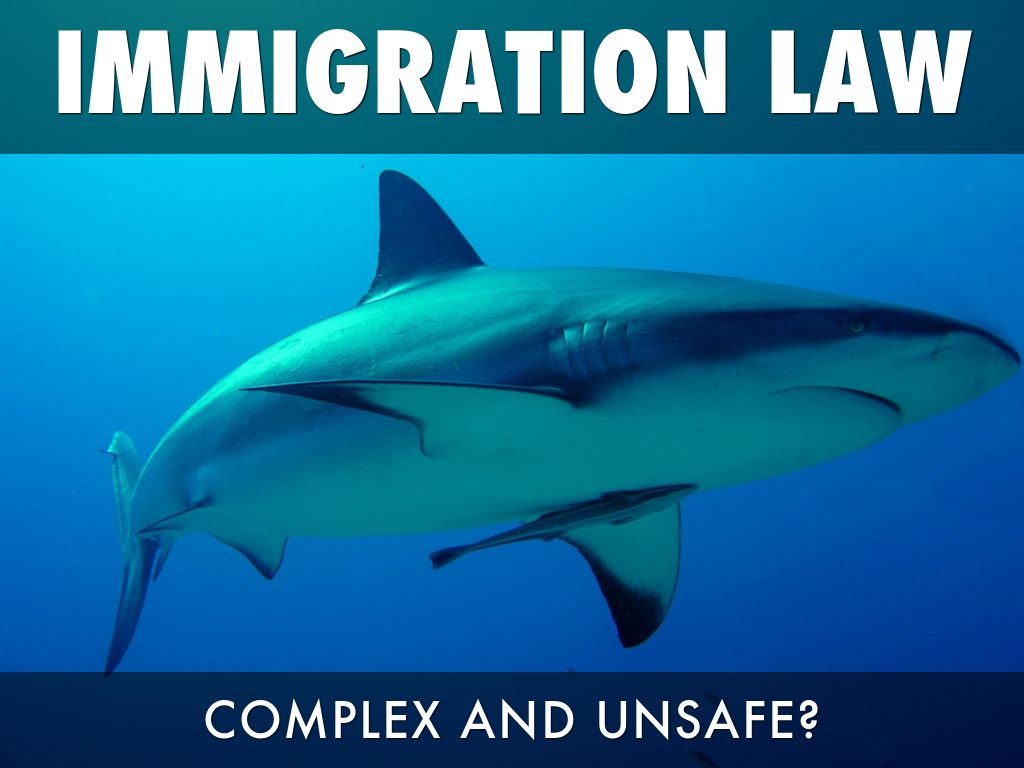 Immigration Law: Complex And Unsafe?