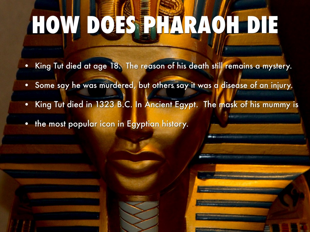 king tutankhamen did not die of Since then, scientists have wondered how tut died an x-ray taken in 1968  showed a bone fragment inside king tut's skull, but the test was not.