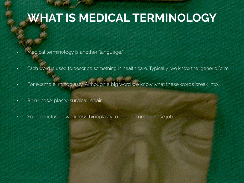 Components Of Terminology by Delaney Ball
