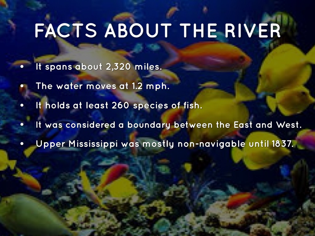 Fun Facts Kids Mississippi