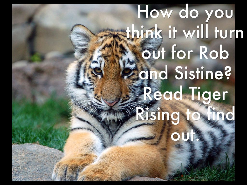 The Tiger Rising by so...
