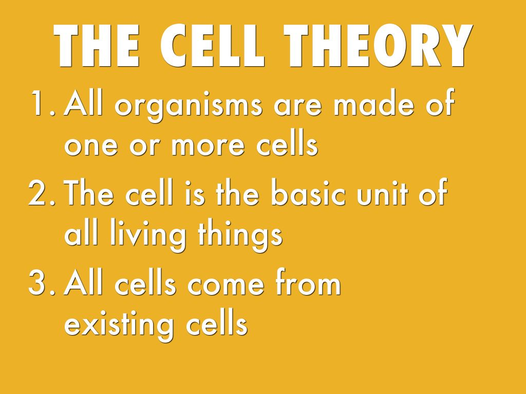 cell theory The cell theory is an explanation of what cells are and why they exist the three main parts are: 1) all living things are made of cells and their products, 2) new cells are created by old cells.