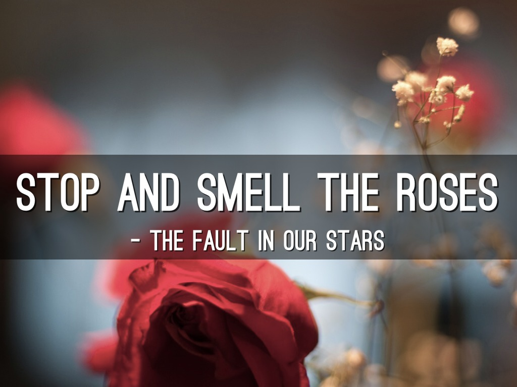 stop and smell the roses Find album reviews, stream songs, credits and award information for stop & smell the roses - ringo starr on allmusic - 1981 - the idea, back in.