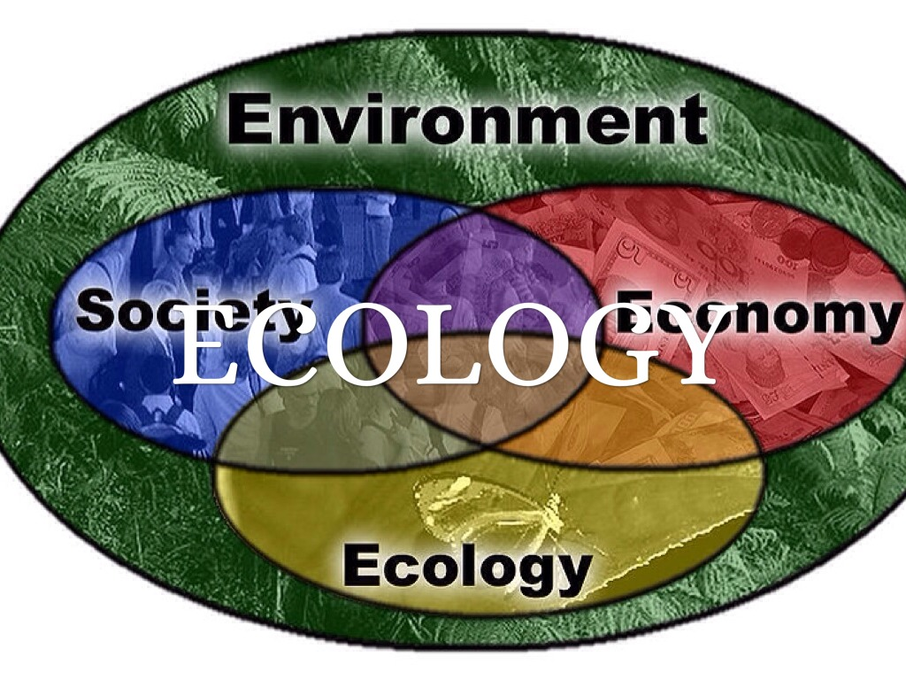ecology encountering environmental essay history history in in nature past Environmental psychology psy/460 environmental psychology environmental psychology was established as an independent discipline in the 1950's and 1960's that studied the environmental features as well as human behavior in the physical and sociophysical environment.