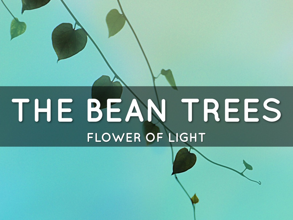 essays about the bean trees Essays - largest database of quality sample essays and research papers on song of the trees  in the bean trees, taylor is faced with multiple adversities,.