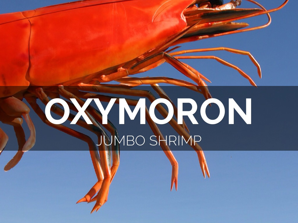 Jumbo Shrimp is an Oxymoron found in Grocery Stores In life A Jumbo Shrimp is actually a type of shrimp you can buy at large supermarkets It can be used in many
