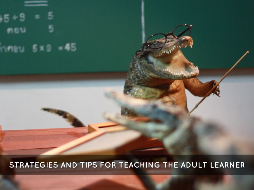 Strategies And Tips For Teaching The Adult Learner