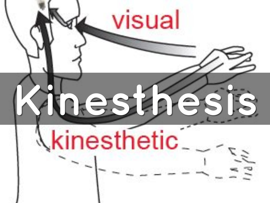 kinesthesis The definition of kinesthetic relates to learning through feeling such as a sense of body position, muscle movement and weight as felt through nerve endings.