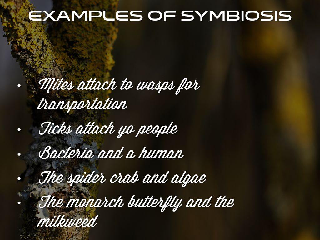 Copy Of Symbiotic By Sophia Harris