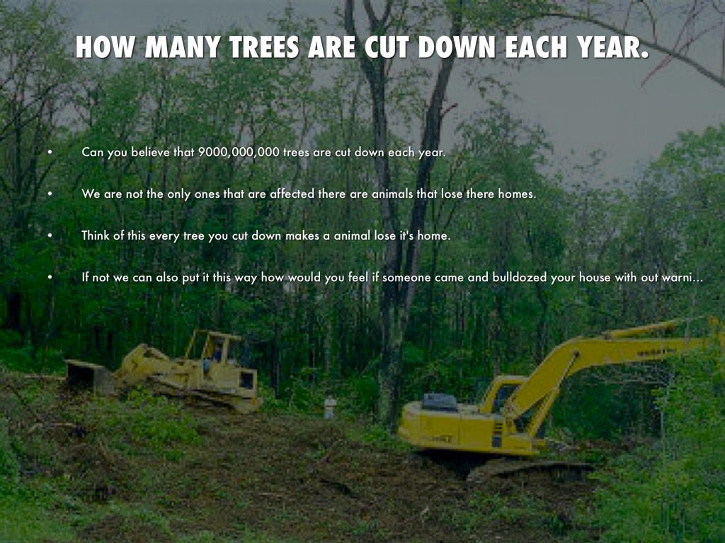 number of trees cut down each year - image home garden and tree
