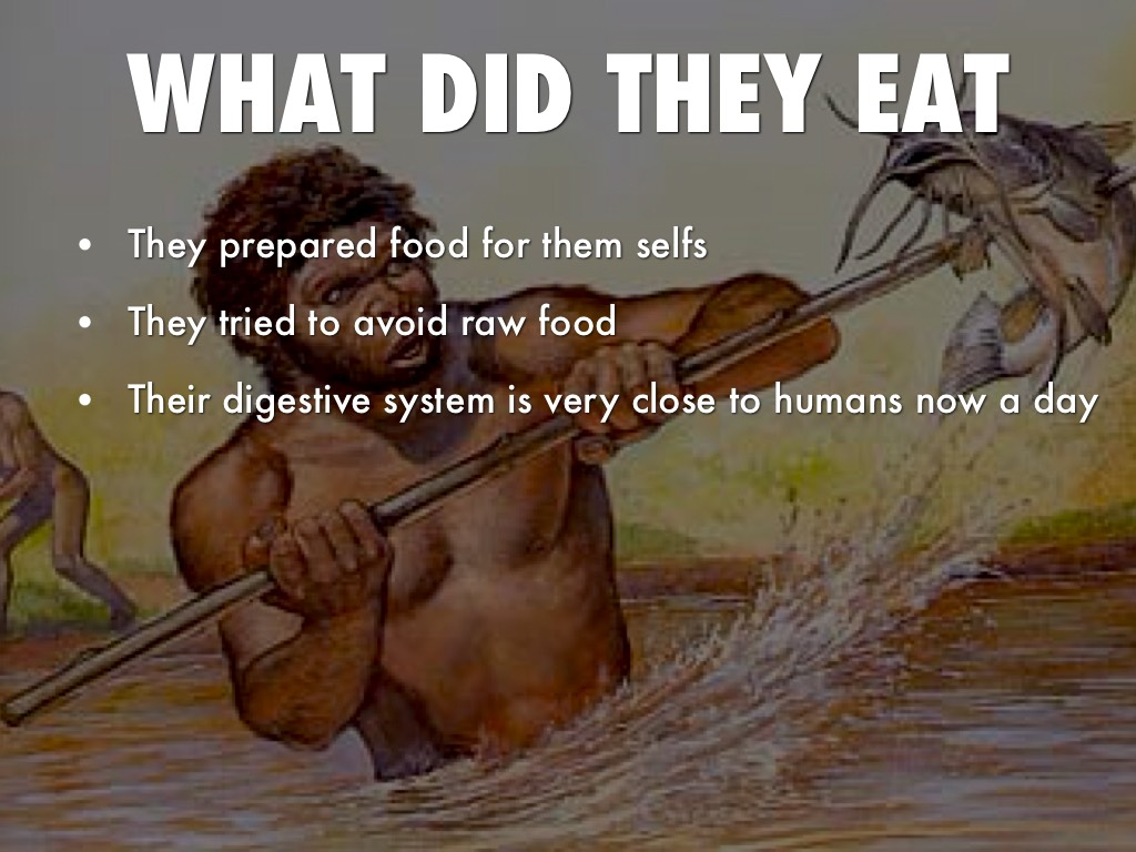 Food Homo Erectus Eat