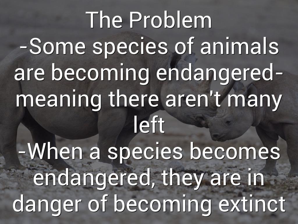 Species Extinction