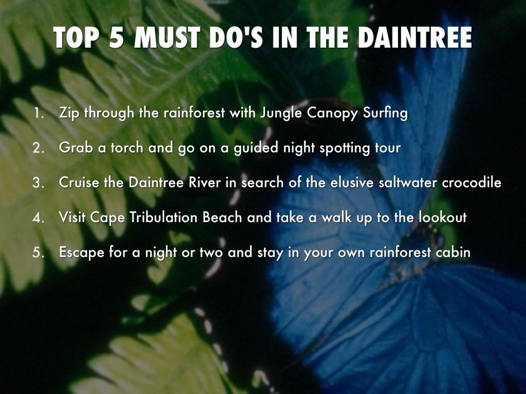 daintree rainforest by ryley gronau