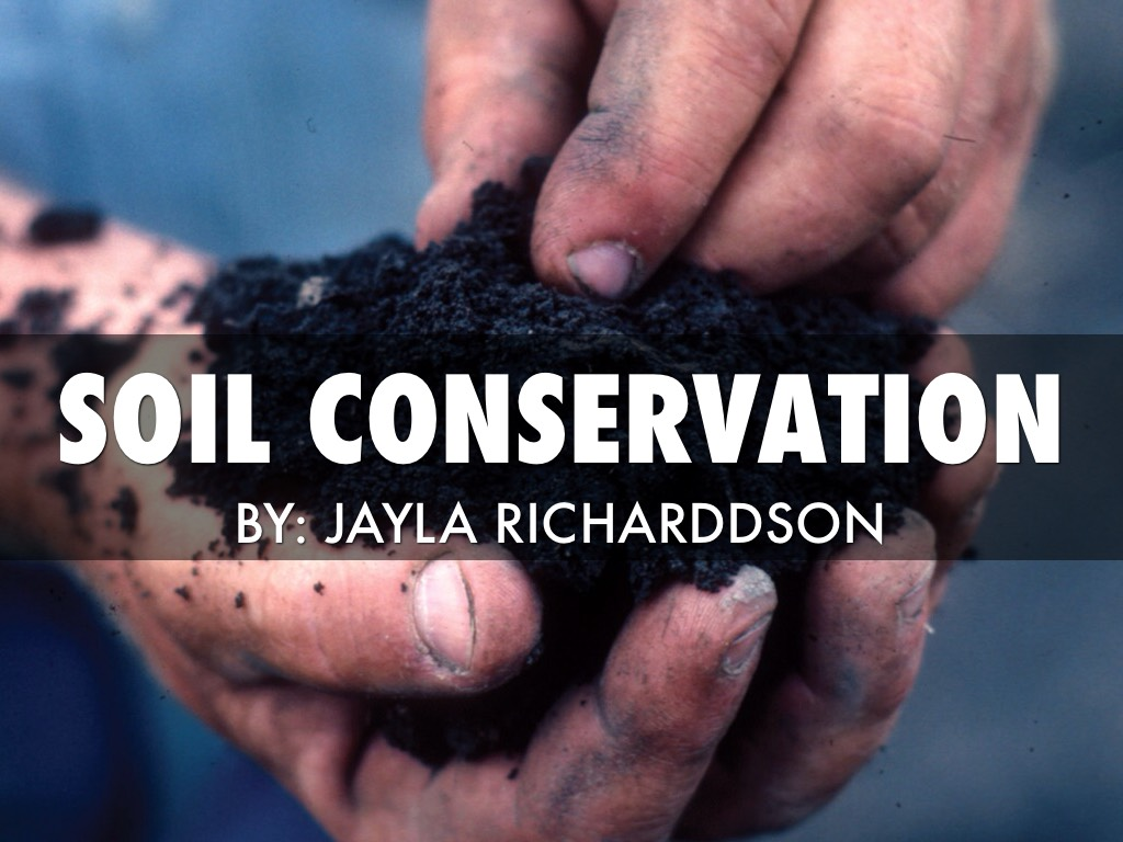 oil conservation The conservation division protects correlative rights and prevents waste of natural resources this is specifically done by effective regulatory oversight of oil and.