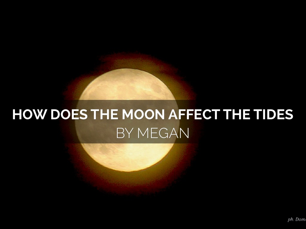 the moon s effect on tides Ocean tides are periodic rises and falls in the level of the sea, and are formed by the gravitational attraction of the moon and sun on the water in the ocean.