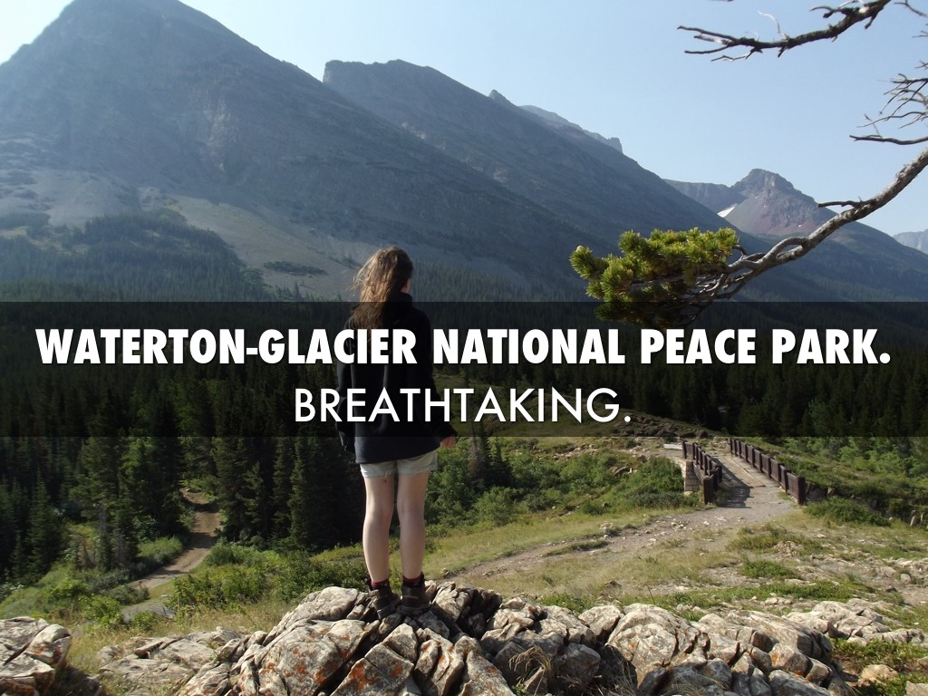 Glacier National Park: The First 100 Years: C. W
