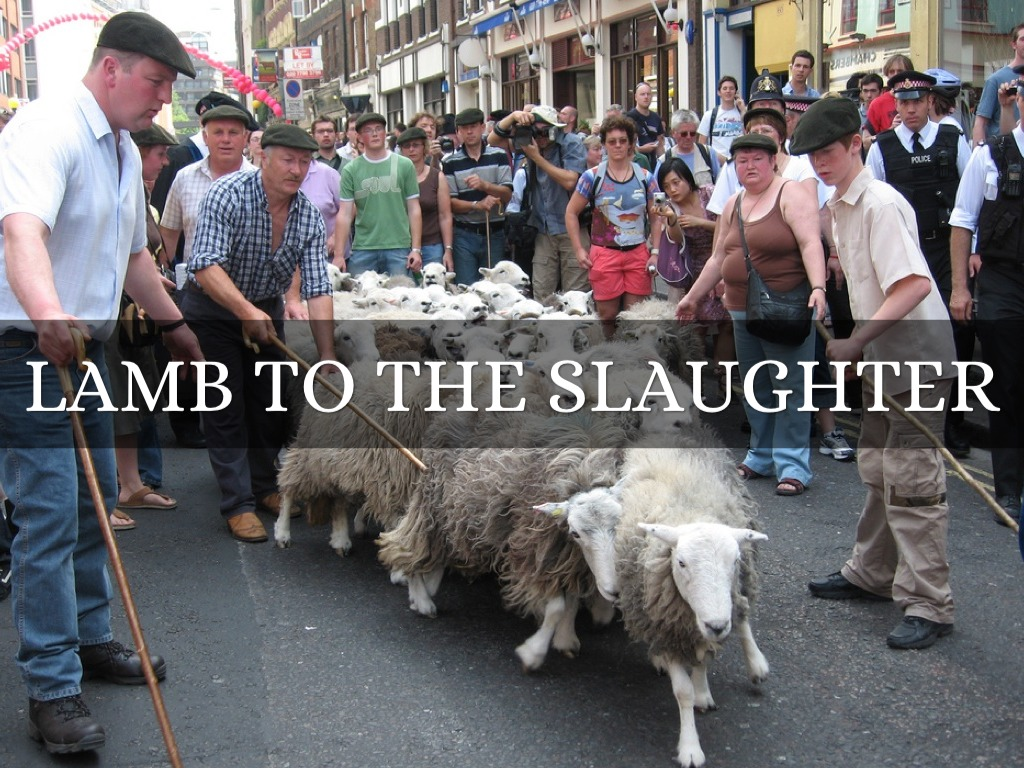 lamb the slaughter