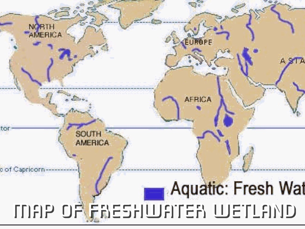 MAP OF FRESHWATER WETLAND