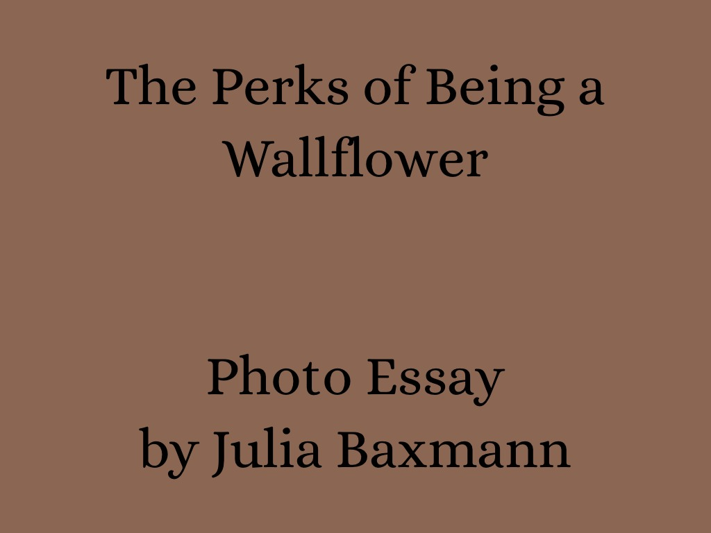 the perks of being a wallflower photo essay by julia