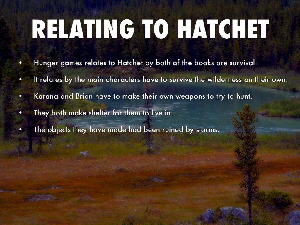 theme to the hatchet In order to check your knowledge of the themes from the book ''hatchet'', use the quiz and corresponding worksheet the quiz has five.