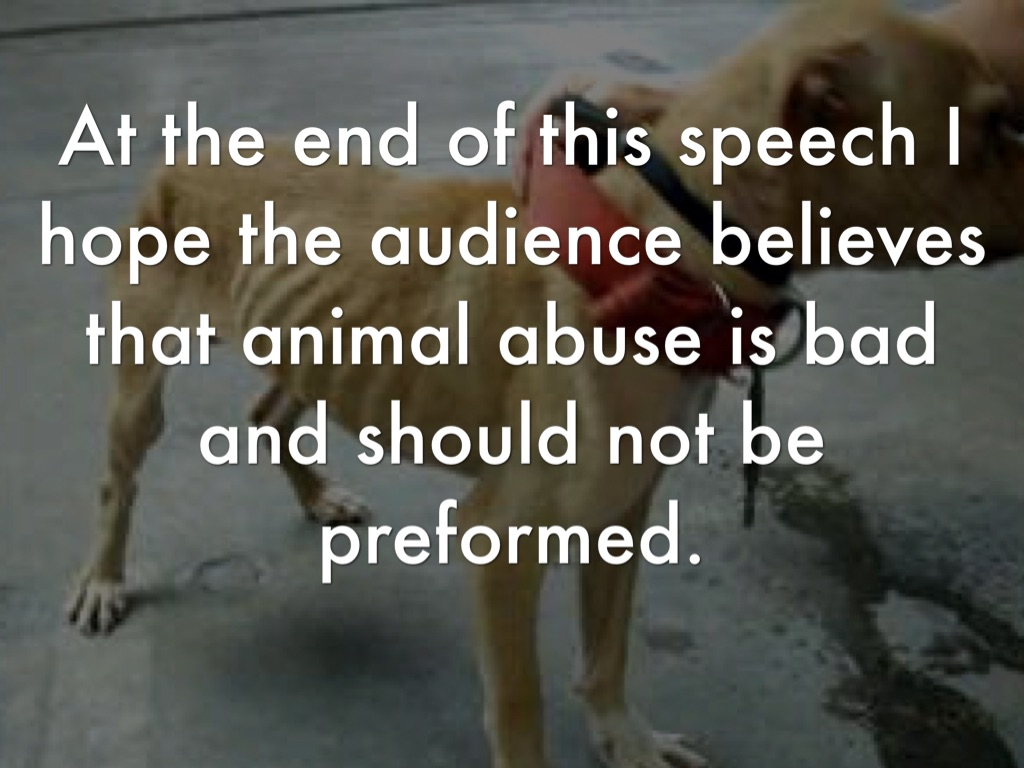 animal cruelty speech debate All 50 states have laws against animal abuse the best way to fight animal cruelty is to enforce these laws more vigorously and to increase the penalties.