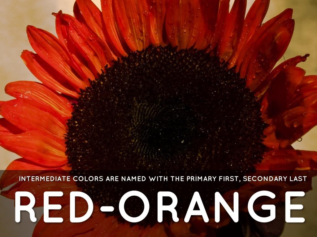 RED ORANGE INTERMEDIATE COLORS