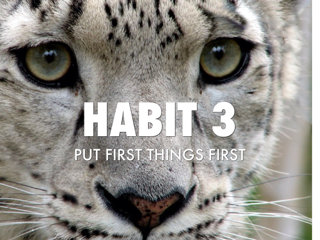 habit 3  put first things first by timothy flynn