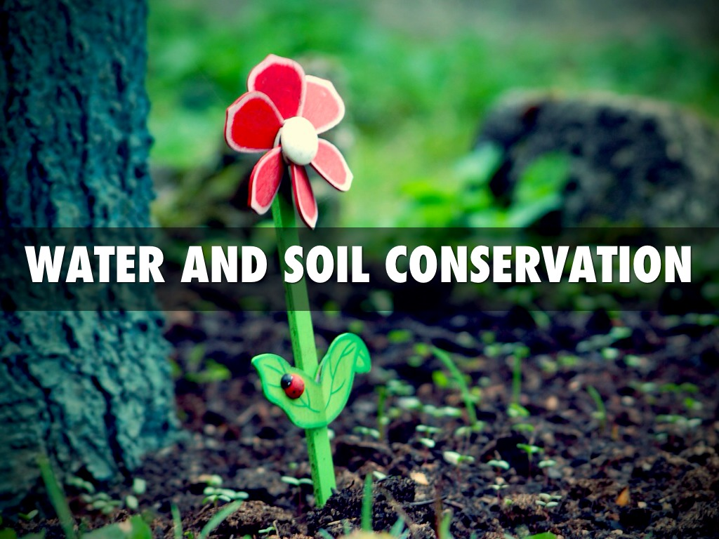 Water and soil conservation by lexi sadd for Soil and water conservation