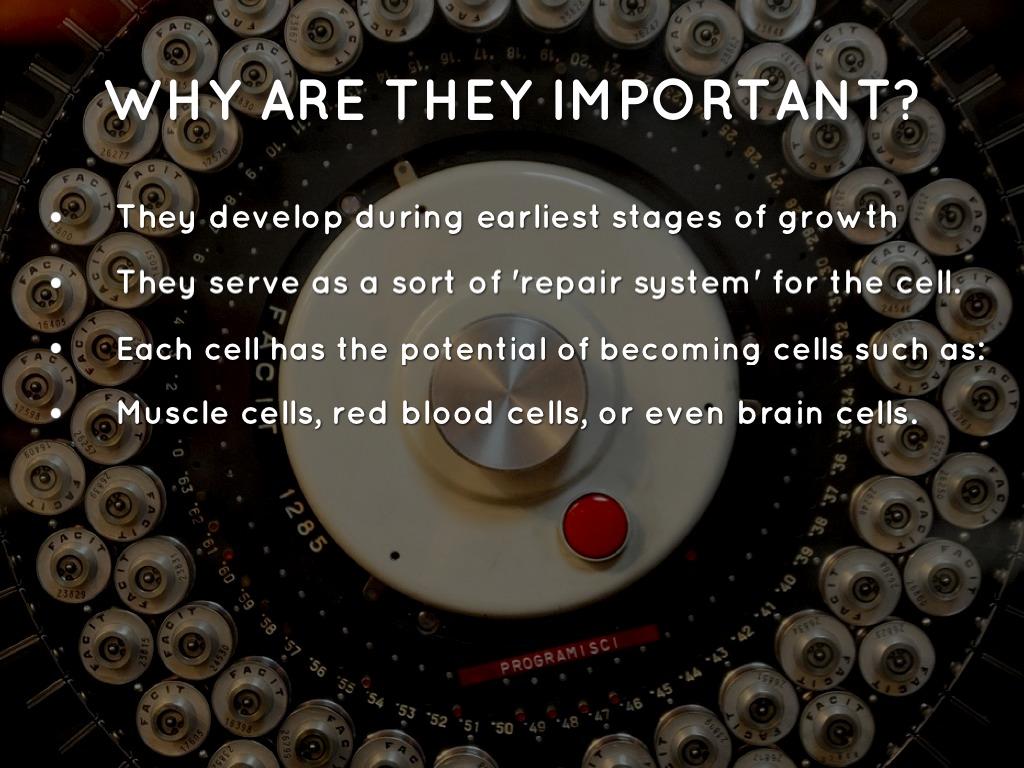 Stem Cell Research by Mickala Rosen