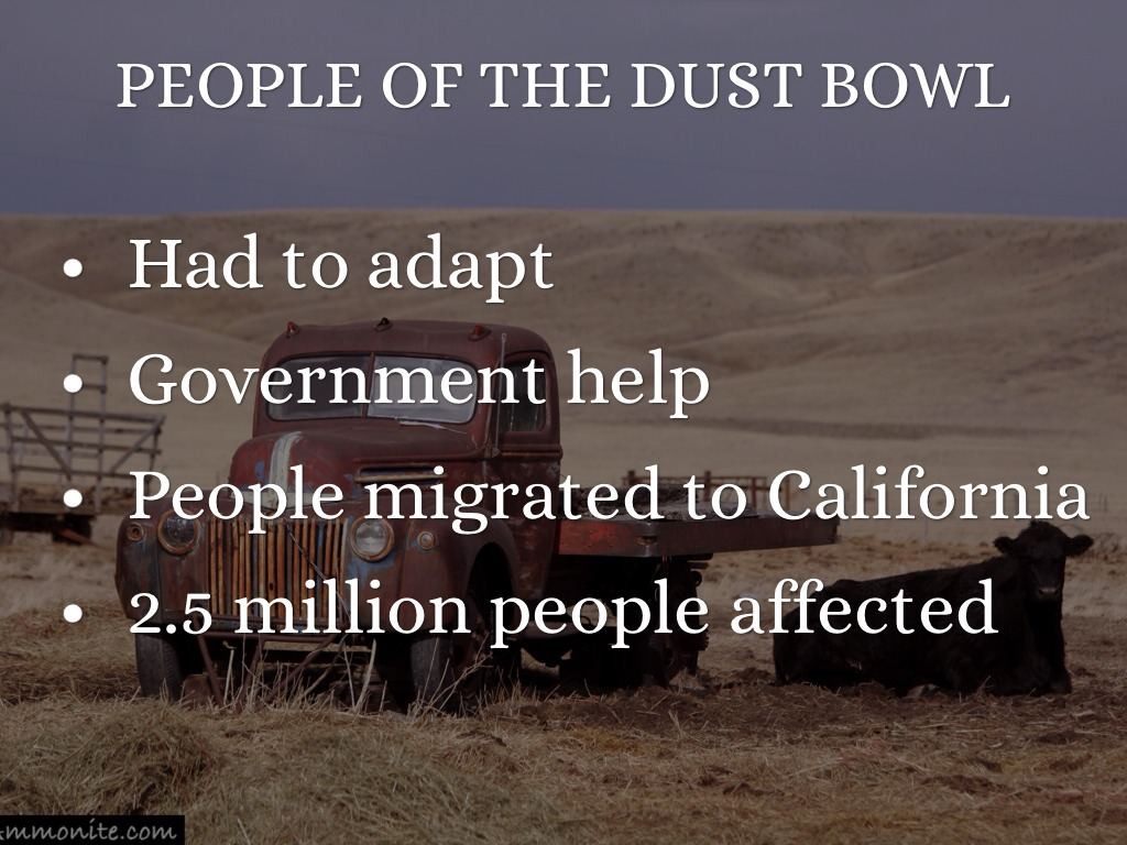 people affected by the dust bowl essay