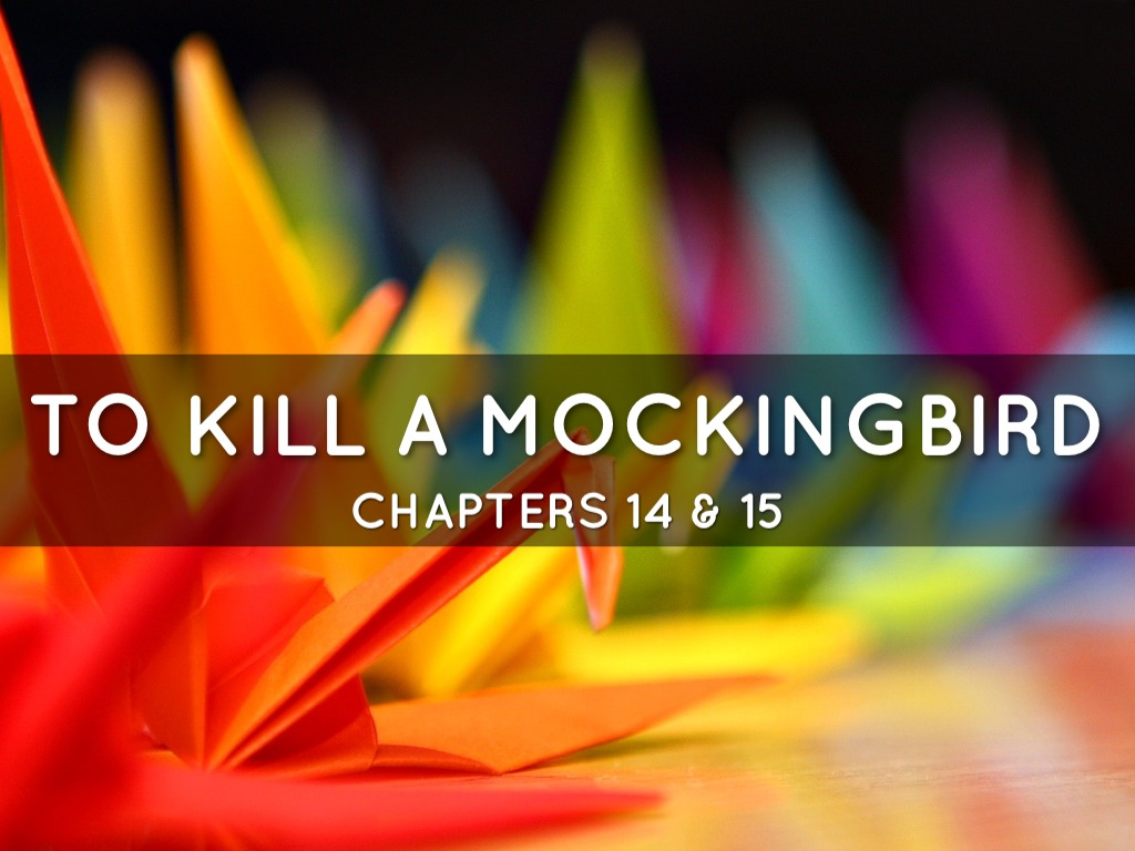 to kill a mockingbird 14 15