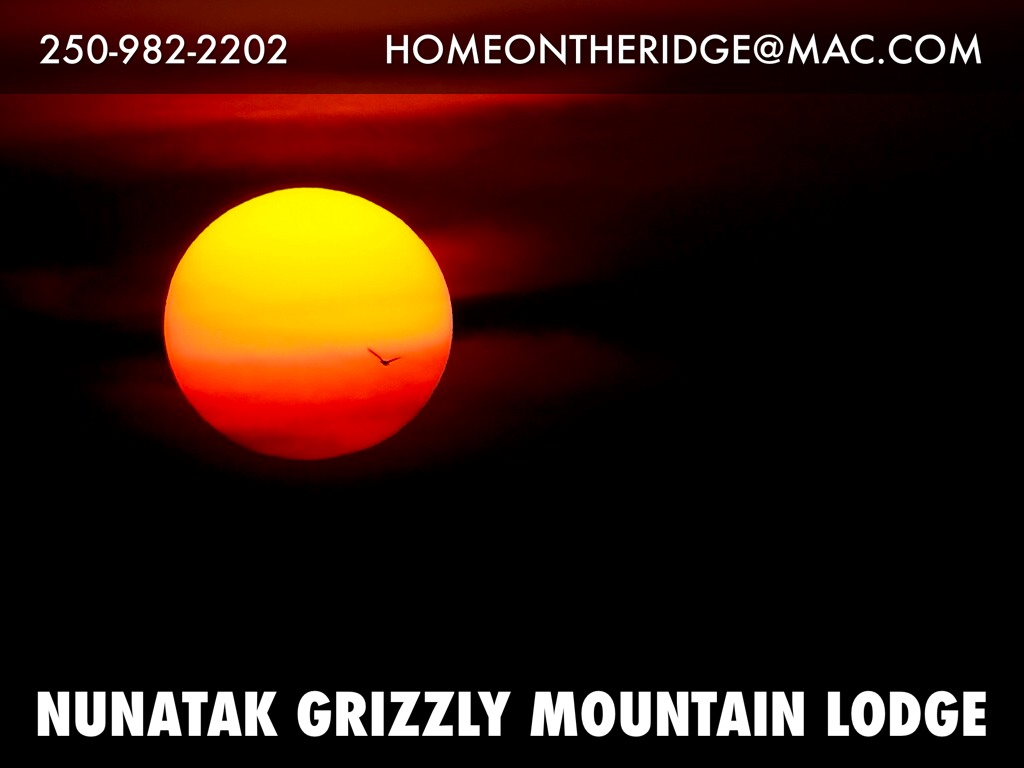Nunatak Grizzly Mountain Lodge