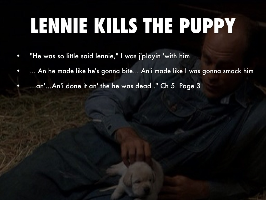 the shooting of candys dog in Candy laterregrets not shooting the dog himself share to: what is so significant about the killing of candy's old dog in of mice and men.