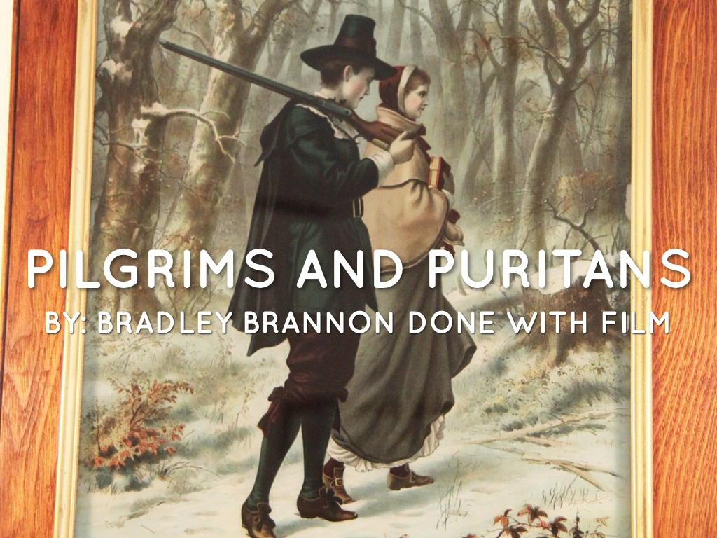 pilgrims and puritans Pilgrim fathers: pilgrim fathers, in american colonial history, settlers of plymouth, mass, the first permanent colony in new england (1620) of the 102 colonists, 35 were members of the english separatist church (a radical faction of puritanism) who had earlier fled to leiden, the netherlands, to escape.