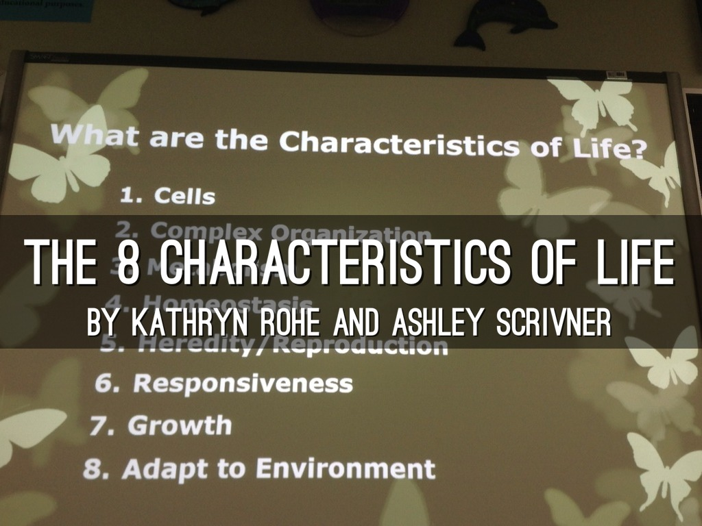 Characteristics Of Life by Kathryn Rohe