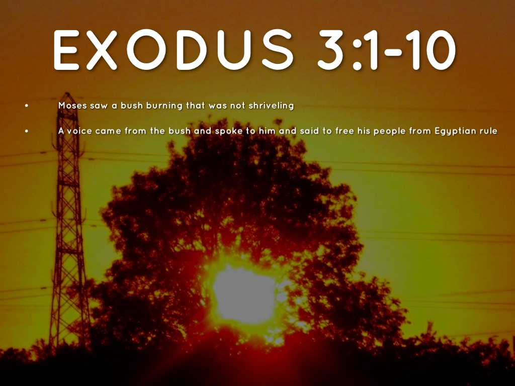 moses and the burning bush exodus Song # 1061 from our gospel in song collection by col johnston the book of exodus tells us in chapter 3 that the angel of the lord spoke to moses from within a burning bush.